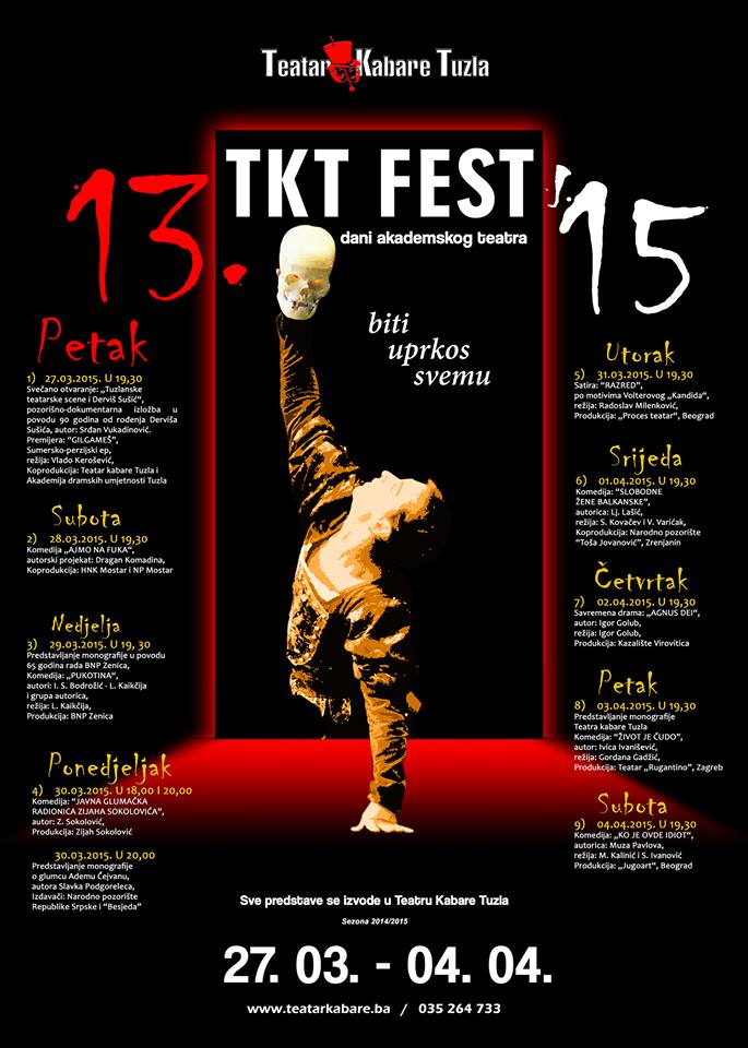 Copy of Plakat XIII TKT FESTa 15